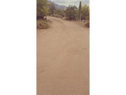 4514 Wolverine Pass Road Apache Junction, AZ MLS# 5285305