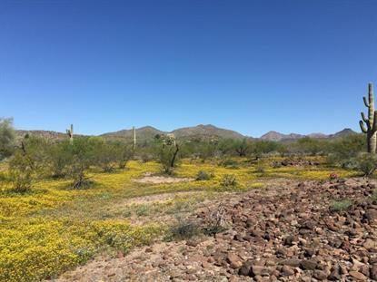 700 Wolftrap Road New River, AZ MLS# 5286226