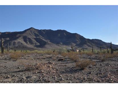 3271 CARVER Road Laveen, AZ MLS# 5309305