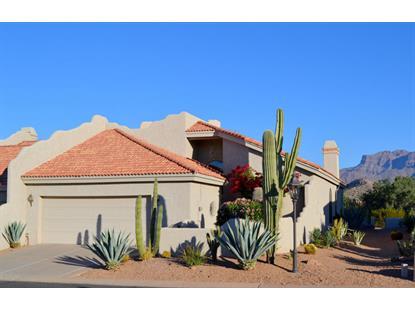 8812 GREENVIEW Drive Gold Canyon, AZ MLS# 5323404