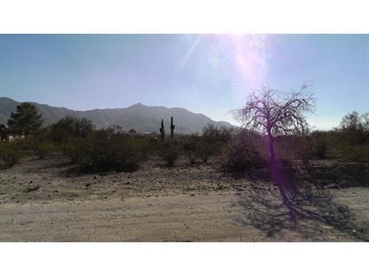 9802 29TH Drive Laveen, AZ MLS# 5336395