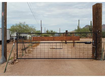 256 Gold Poppy Street Apache Junction, AZ MLS# 5392311
