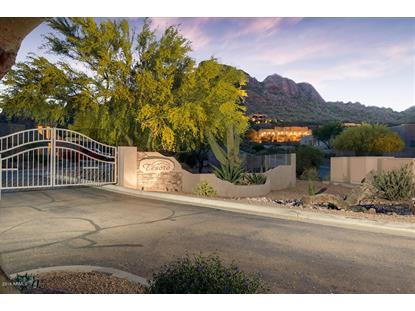 9957 HIDDEN TREASURE Court Gold Canyon, AZ MLS# 5423212
