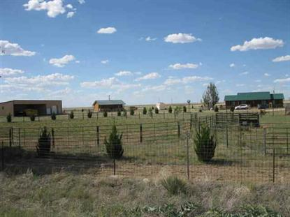 3898 US HWY 60-84 Melrose, NM MLS# 20124028