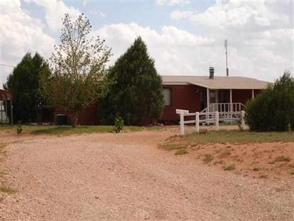 1121 E ABO Highway Melrose, NM MLS# 20133096