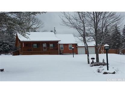 270 County Route 56  Maplecrest, NY MLS# 101021
