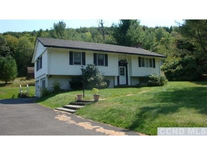 539 County Route 40  Maplecrest, NY MLS# 101448