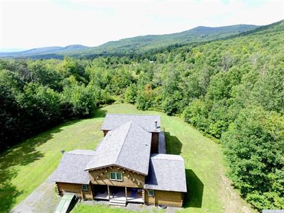 19 Gun Club Road  Windham, NY MLS# 105301
