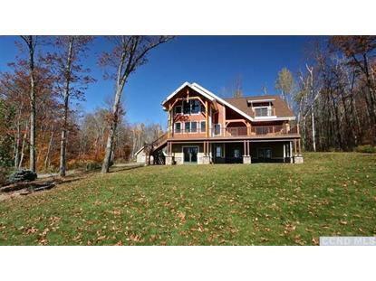 128 Mt Pisgah Rd Windham, NY MLS# 93464