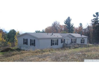1080 High Hill Rd Earlton, NY MLS# 94401