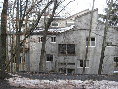 5 Lookout Ln Windham, NY MLS# 94422