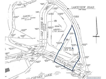 6 Lakeview Rd Craryville, NY MLS# 96026