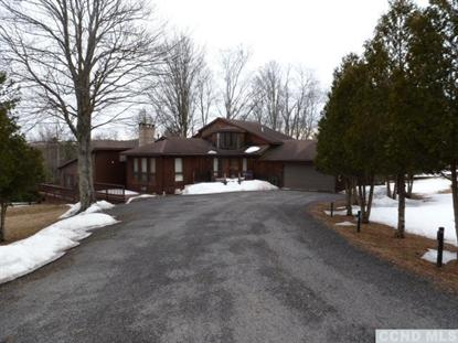 2517 County Rt 10  Windham, NY MLS# 96052