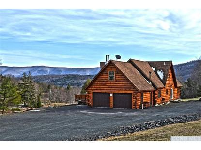 241 Campbell Rd.  Windham, NY MLS# 96403