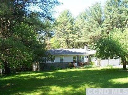 223 All Peats Bed Rd Earlton, NY MLS# 97326