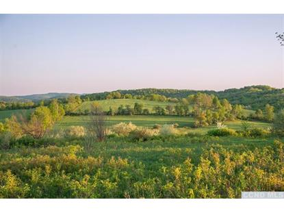 Martindale Rd Craryville, NY MLS# 98500