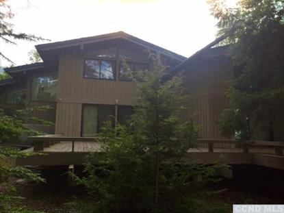 154 Trailside  Windham, NY MLS# 98814