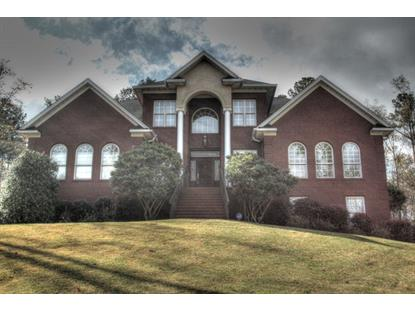 2111 SANDERS CREEK DR  Opelika, AL MLS# 110774