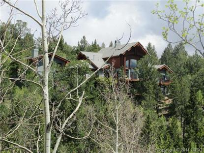 540 Mohawk Heights Florissant, CO MLS# 1046279