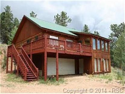 123 N Granby Lake Way Divide, CO MLS# 1048081