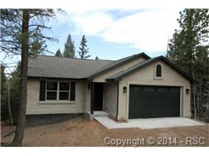 31 Wahsatch Road Divide, CO MLS# 1066832