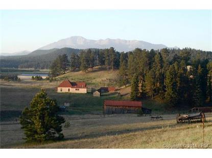 3 Zuni Point Woodland Park, CO MLS# 1136909