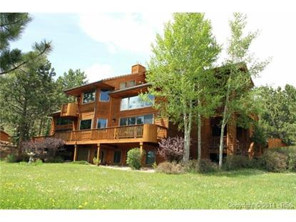 820 Sun Valley Drive Woodland Park, CO MLS# 1319972