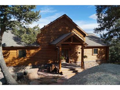 297 Boulder Lane Florissant, CO MLS# 1428380