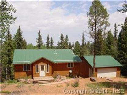 564 Black Bear Drive Divide, CO MLS# 1676894