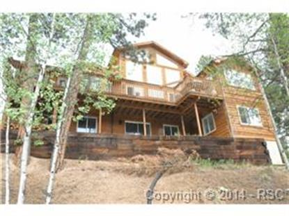 251 Blue Mesa Drive Divide, CO MLS# 1693832