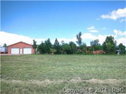 6345 Fieldview Way Peyton, CO MLS# 1723804