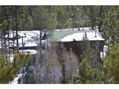328 Remwood Circle Divide, CO MLS# 1750685