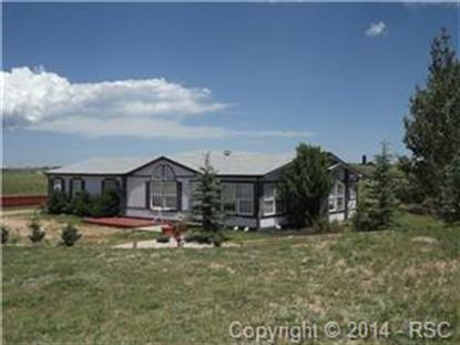 296 Doublet Lane Divide, CO MLS# 1844440