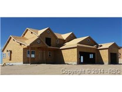 12395 Black Hills Drive Peyton, CO MLS# 1850736