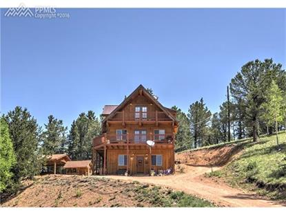 134 Timber Ridge Road Divide, CO MLS# 1923282