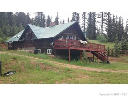 1699 Spring Valley Drive Divide, CO MLS# 2015668