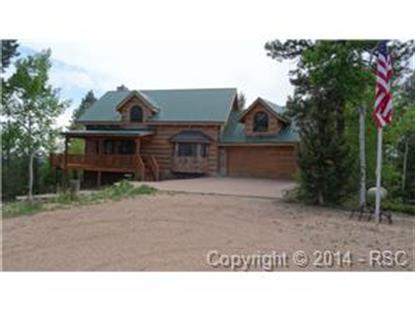131 Daniel Way Divide, CO MLS# 2055174