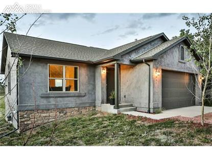 161 Aspen Drive Divide, CO MLS# 2118356