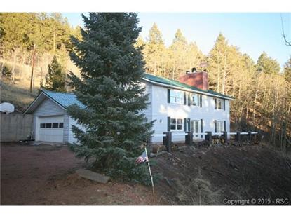 72 Mullite Lane Divide, CO MLS# 2137373