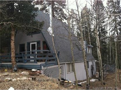 101 Willow Road Divide, CO MLS# 2146976