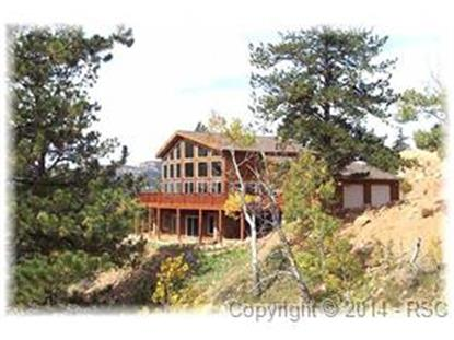 266 Big Rock Point Florissant, CO MLS# 2340125