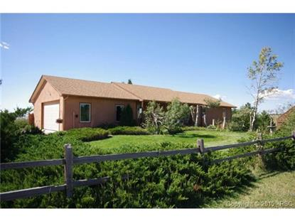 18775 Sweet Road Peyton, CO MLS# 2373934