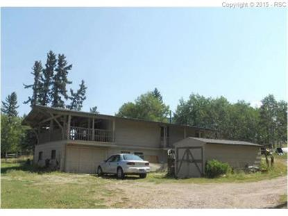 222 Nottingham Lane Divide, CO MLS# 2438295