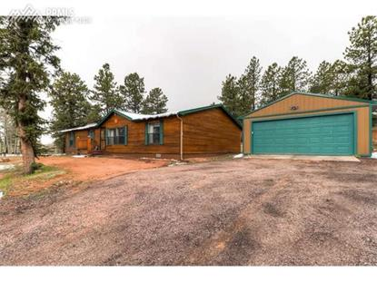 97 Shadow Lake Drive Divide, CO MLS# 2556023