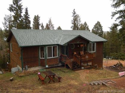 127 Heather Circle Divide, CO MLS# 2991345