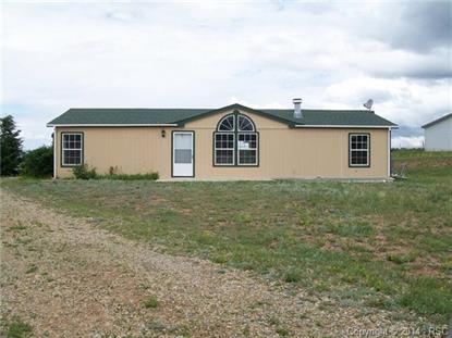 481 Golden Grain Lane Divide, CO MLS# 3147201