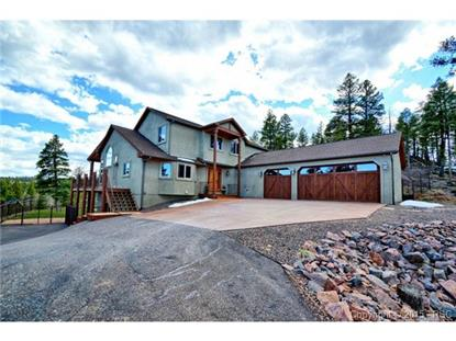 2515 County 782 Road Woodland Park, CO MLS# 3338072