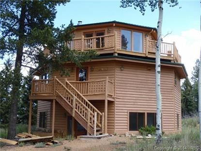 534 Saguache Drive Divide, CO MLS# 3350505