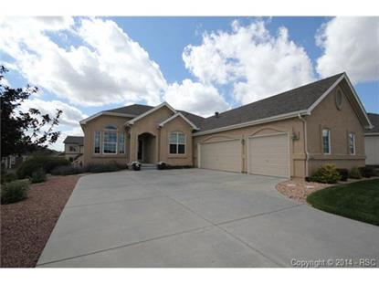 10868 Huron Peak Place Peyton, CO MLS# 3632527