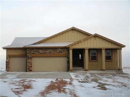 11505 Blackcomb Trail Peyton, CO MLS# 3807748